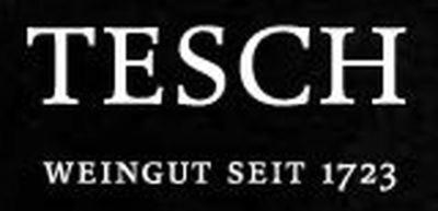 Tesch Logo