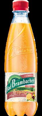 Bad Brambacher Vital Tropic
