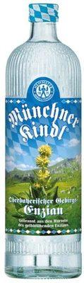 Gebirgsenzian Münchner Kindl